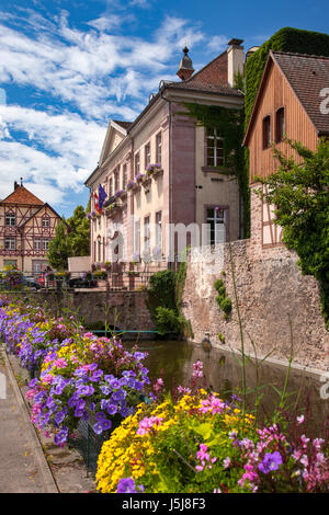 Flowers line the walkway to the Hotel de Ville (Marie) and the medieval town of Riquewihr, Alsace, France - Stock Photo