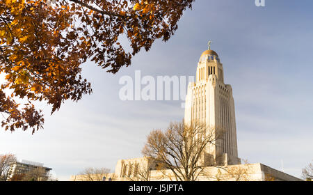 Leaves still hold on in December at Lincoln's Capital - Stock Photo