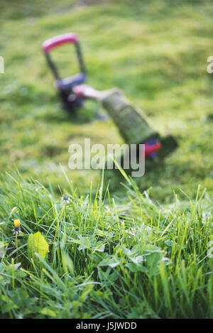 String trimmer lies on mown lawn middle of the yard, tool - Stock Photo