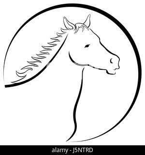 horse logo - Stock Photo