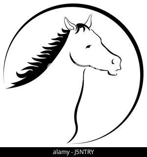 horsehead drawing - Stock Photo