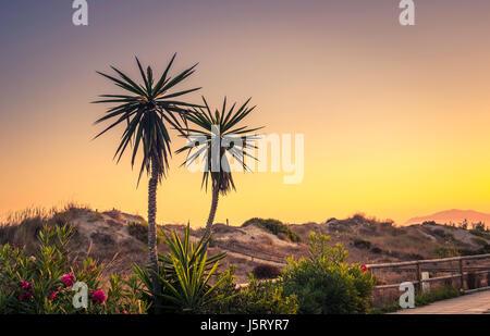 Early morning sunrise in Elviria, Marbella, Spain. - Stock Photo