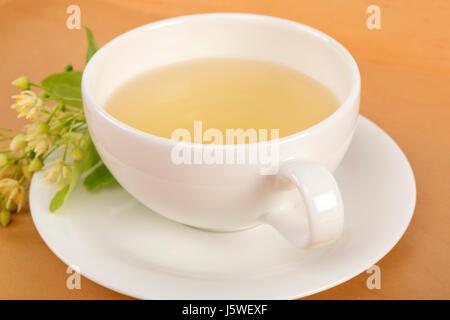 Studio shot of hot linden tea in a fine white porcelain cup on a wooden tabletop. Large-leaved Linden, Tilia platyphyllos. - Stock Photo