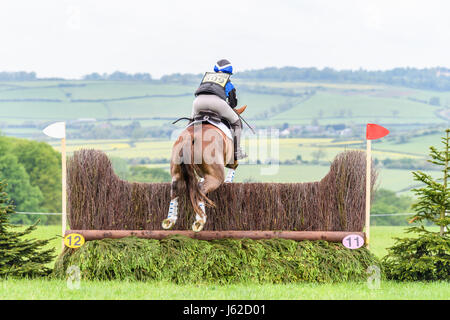 Rockingham Castle grounds, Corby, UK. 19th May, 2017. The horse 'Sanau Hugo' ridden by Olivia Dawson jumps a fence - Stock Photo