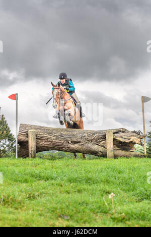 Rockingham Castle grounds, Corby, UK. 19th May, 2017. The horse 'Hot Flush' ridden by Wendy webb of the USA jumps - Stock Photo