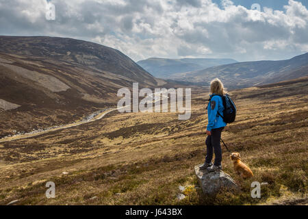 A dog walker overlooks Jock's Road near the mountain of Creag Nan Gabhar near Braemar, Aberdeenshire, Scotland, - Stock Photo