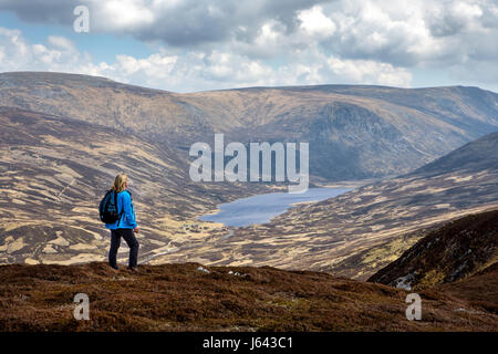 The mountain of Creag Nan Gabhar near Braemar, Aberdeenshire, Scotland, UK - Stock Photo
