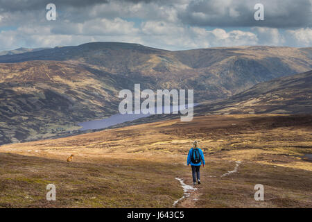 A walker approaches Loch Callater on the descent from the mountain of Creag Nan Gabhar near Braemar, Aberdeenshire, - Stock Photo
