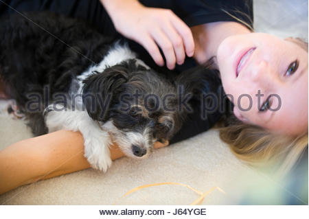 Small pet dog sitting with Teenage girl at home - Stock Photo