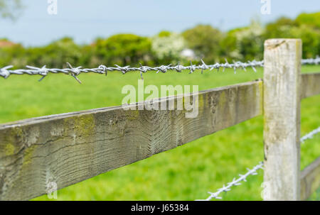Barbed wire on a wooden fence surrounding a field in the countryside. - Stock Photo