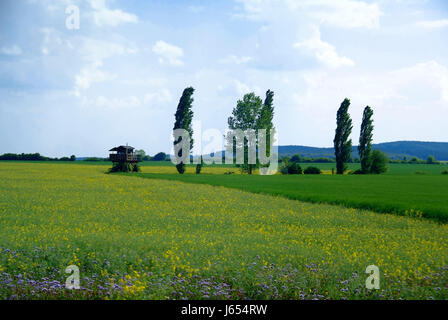 austrians freedom liberty border agreement hungary watching observe watch plant