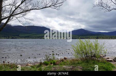 Loch Morlich Shore - Cairngorms in Background - Stock Photo