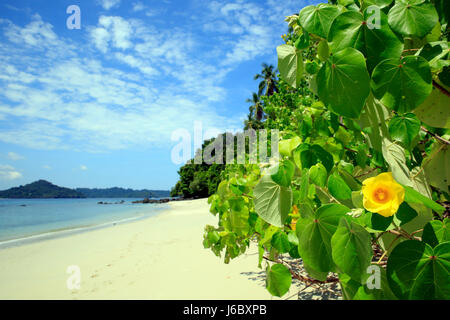 Tropical Beach of Coibita, aka Rancheria, with Isla Coiba in the Background. Coiba National Park, Panama - Stock Photo