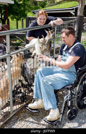 Tennessee Sevierville Smoky Mountain Deer Farm and Exotic Petting Zoo goat wheelchair man woman couple hand feed - Stock Photo