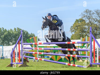 Rockingham Castle, Corby, UK. 21st May, 2017. Rider Paul Graham and his horse Weston One Vision leap over the top - Stock Photo