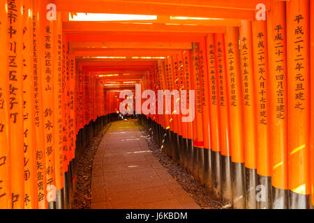 Fushimi Inari Torii gates - Stock Photo