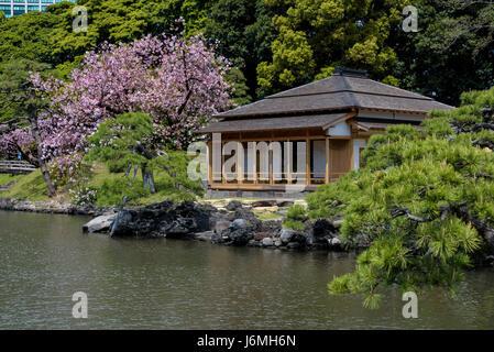 Swallow teahouse or Tsubame no Ochaya, Hama Rikyu japanese gardens. - Stock Photo