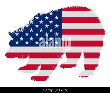 grizzly as america flag - Stock Photo
