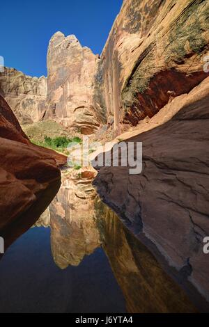 Halls Creek Narrows, Capitol Reef National Park, Utah, America, USA - Stock Photo