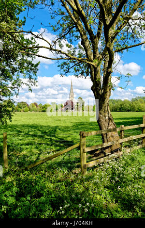 Salisbury Cathedral, Wiltshire, United Kingdom, as seen from the Harnham Water Meadows. - Stock Photo