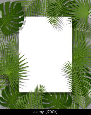 White paper on green summer tropical background with exotic palm leaves and plant. Vector floral design. - Stock Photo