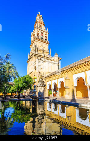 Cordoba, Spain. Bell tower at the Mezquita Mosque-Cathedral from Court of Oranges. - Stock Photo