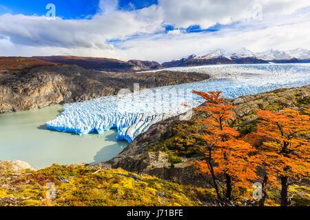 Torres Del Paine National Park, Chile. Grey glacier. - Stock Photo