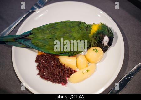 Berlin, Germany. 22nd May, 2017. A stuffed macaw on a plate next to potatoes and red cabbage, at the Naturkundemuseum - Stock Photo