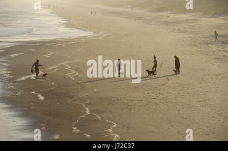 Silhouetted people walking dogs on beach at sunset - Stock Photo