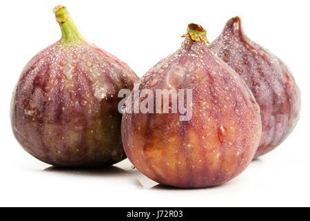 fruit exotic violet wet fig figs oriental feige feigen frisch frucht lila - Stock Photo