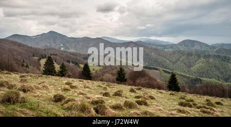 mountain panorama with only wild nature with hills and mountain meadows from Nolcovska Magura hill in Velka Fatra - Stock Photo