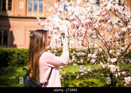 Happy woman traveler take photos by camera with cherry blossoms tree on vacation while spring, Selective focus - Stock Photo