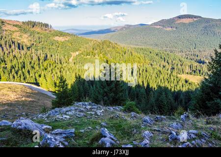 Classic Carpathian landscape. Autumn landscape in mountains of Romania. Conifer forest on hillsides of Apuseni National - Stock Photo