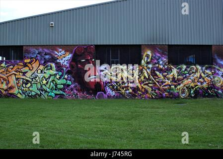 Graffiti by unknown artist. Graffiti on wall, building and grass as on 21 May 2017 in Australia - Stock Photo