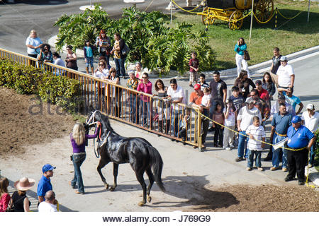 HialeahMiami Florida Hialeah Park quarter horse racing racetrack - Stock Photo