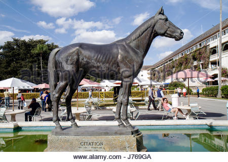 HialeahMiami Florida Hialeah Park quarter horse racing racetrack statue Citation - Stock Photo