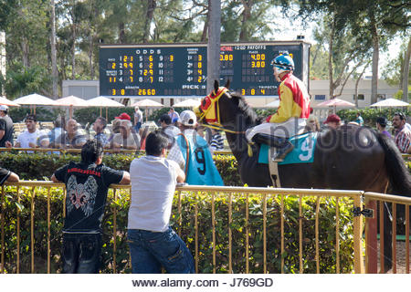 HialeahMiami Florida Hialeah Park quarter horse racing racetrack jockey odds tote board - Stock Photo