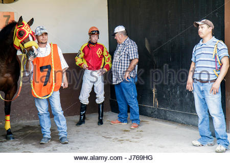 HialeahMiami Florida Hialeah Park quarter horse racing racetrack groom Hispanic man trainer stall jockey getting - Stock Photo