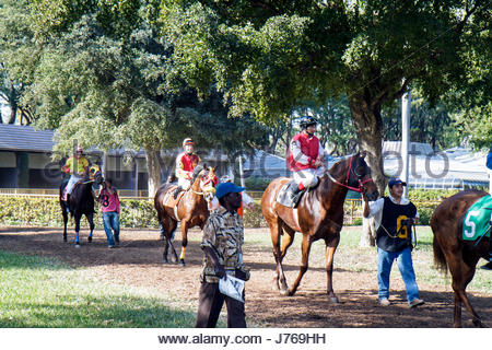 HialeahMiami Florida Hialeah Park quarter horse racing racetrack jockey - Stock Photo