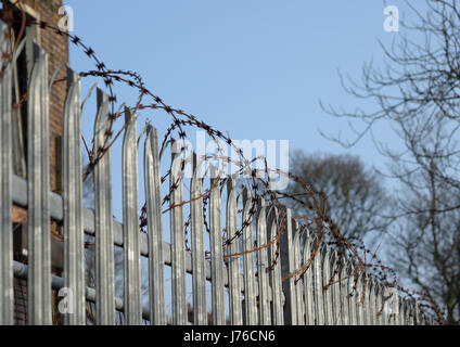 Razorwire on top of palisade security fencing - Stock Photo