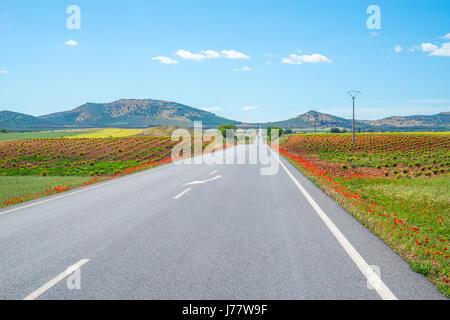 Road to Los Cortijos. Fuente del Fresno, Ciudad Real province, Castilla La Mancha, Spain. - Stock Photo
