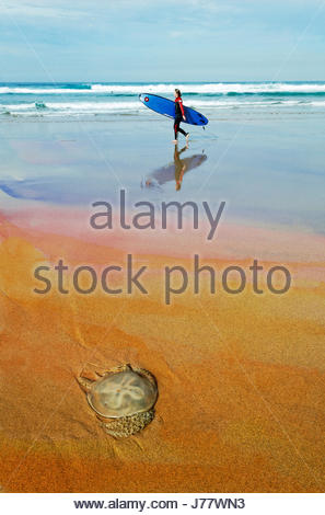 Grunge texture of female surfer with surfboard and jellyfish on beach, Guincho, Portugal, with copy space - Stock Photo