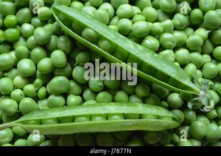 Pods og green peas - Stock Photo