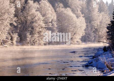 Wintermorgen, Raureif an Bäumen, Isar, Naturschutzgebiet Isarauen, Geretsried, Oberbayern, Bayern, Deutschland - Stock Photo