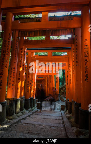Three people climb up the torii path. Rays of sunlight peek through the vibrant gates. Dense vegetation can be seen in between the torii gaps.