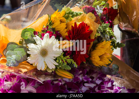 A bouquet of attractively arranged flowers as a gift at a graduation ceremony - Stock Photo