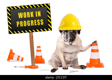 pug dog with constructor safety helmet and yellow and black work in progress sign on wooden pole, isolated on white - Stock Photo