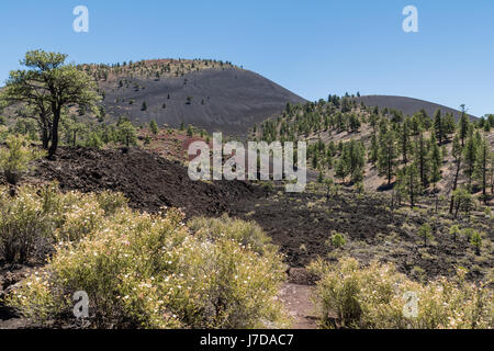 Sunset Crater in Sunset Crater Volcano National Monument near Flagstaff, Arizona under a clear blue sky. - Stock Photo