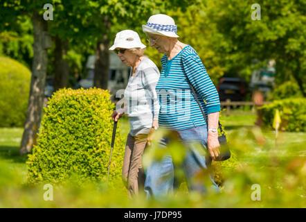 Elderly women taking a summer walk through a park. - Stock Photo