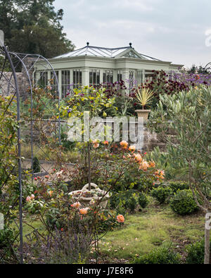 Apricot 'Lady Emma Hamilton' roses  and the summer house by David Salisbury in the background - Stock Photo